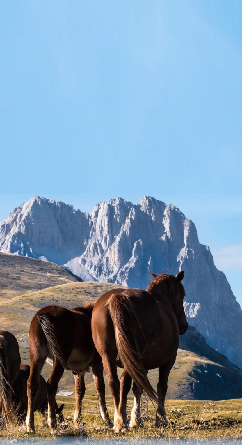 Abruzzo itinerario tourists for future