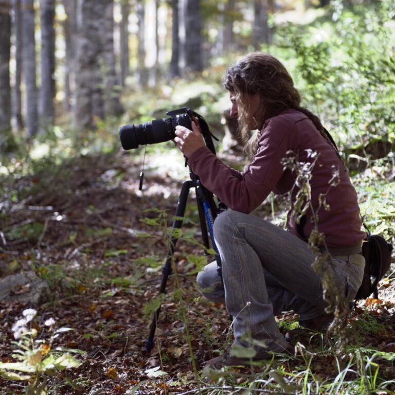 Stefania Gentili fotografa Foresta Cansiglio